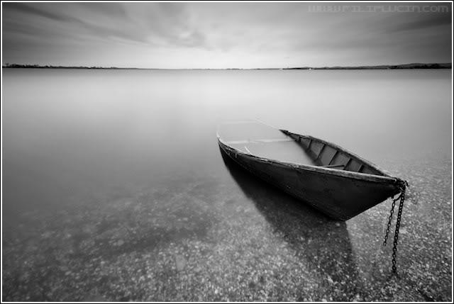 Crno-bela fotografija - Page 24 Crno-bijeli-%C4%8Damac