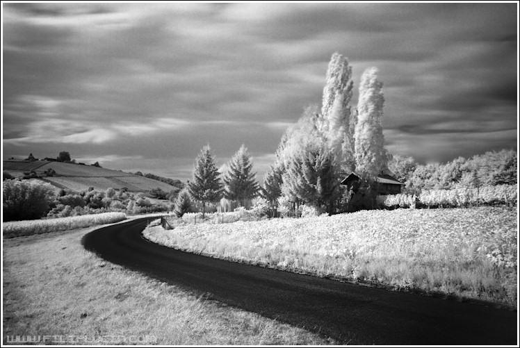 Crno-bela fotografija - Page 24 DSC_8357-velika