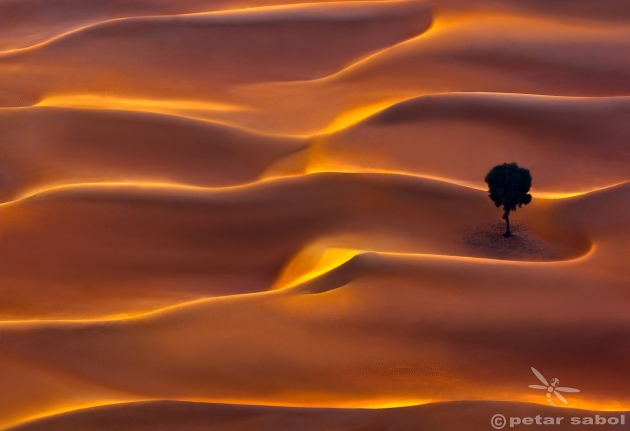 Petar Sabol - Desert magic