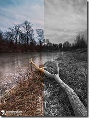 Konverzija kolor fotografije u crno bijelu