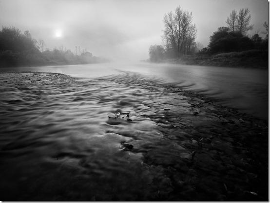 Crna rijeka