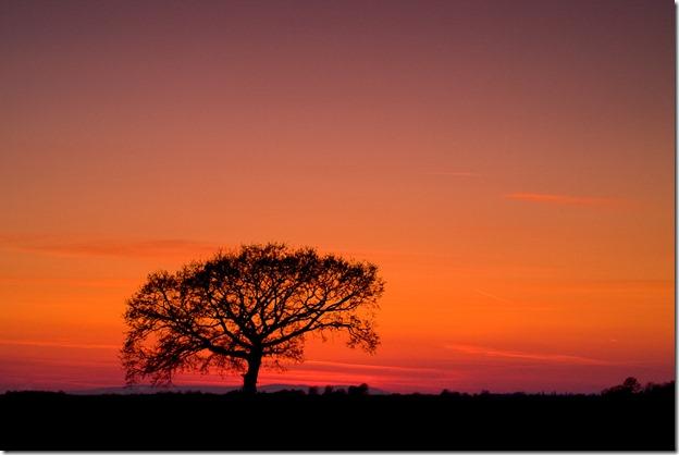 Međimurska Afrika