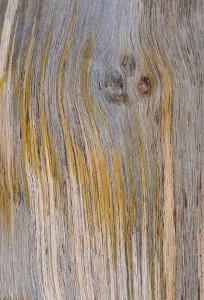 Željko Ovčar Abstrakt A3