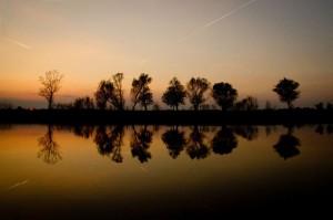 Sinisa Ludas Vode Sunset mirror