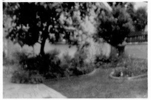 izlozba camera obscura (07)