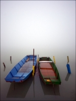 2-2010-Dolencic.jpg